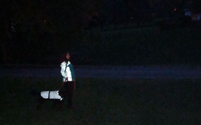 W woman and a dog wearing reflective outerwear outside at night.